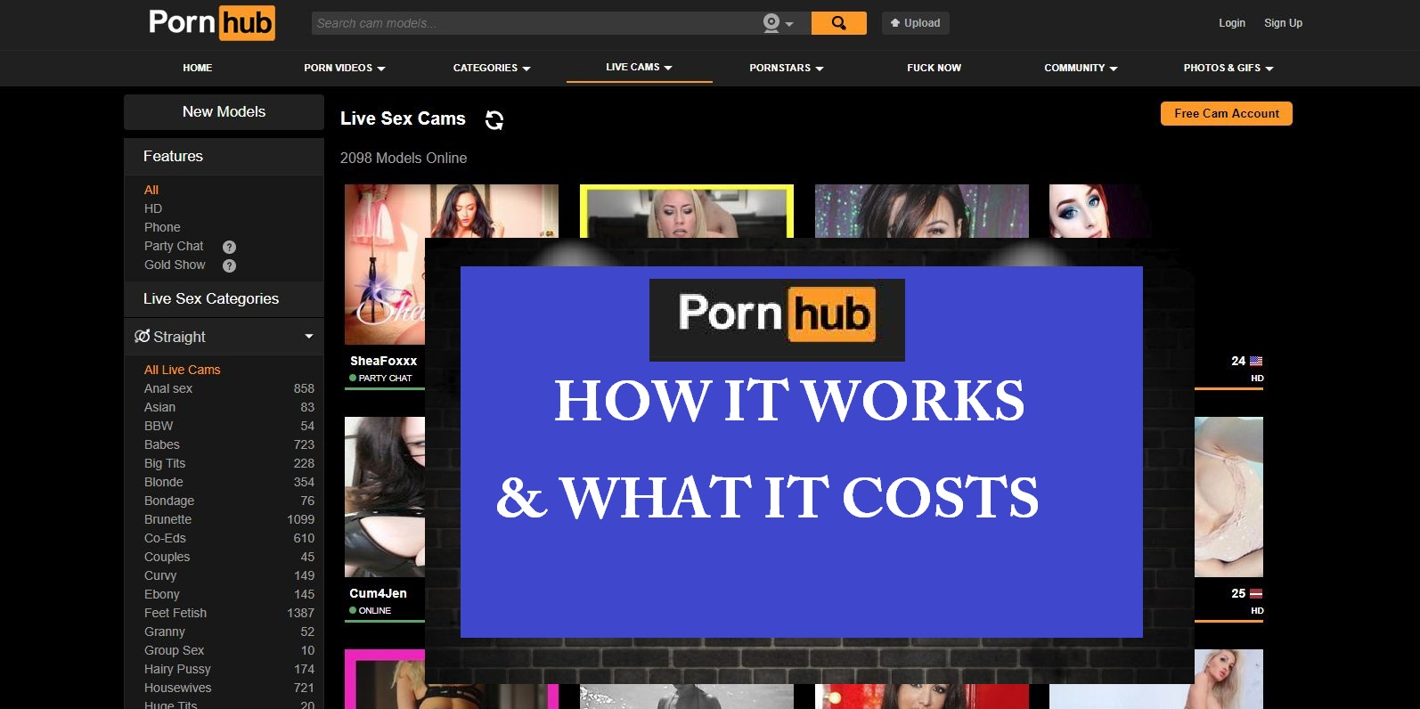How much pornhublive.com costs